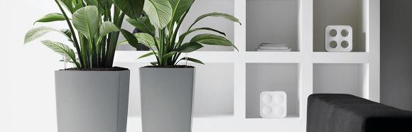 Health Benefits Of Indoor Plants And Where To Find Large Garden Planters And Planter Boxes In Perth
